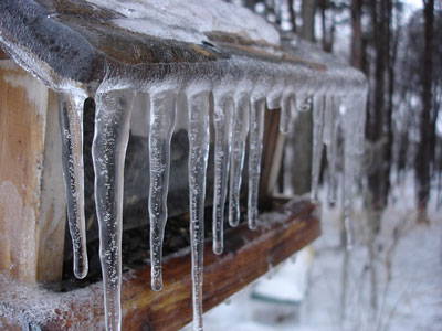 icicles-208484_400